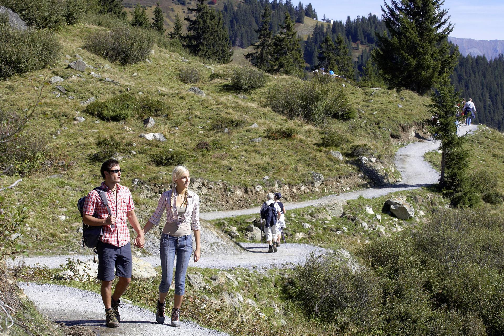 Panarama-Genussweg-(6).jpg